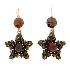 Victorian Gilded And 14k Gold Bohemian Garnet Star Earrings