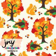 Image of JNY Autumn Organic Jersey