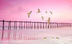 Ocean Art Print Sandpipers Ocean Beach and Dock by FineArtography
