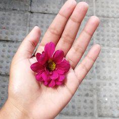 """42 curtidas, 1 comentários - Danielle França (@daniellefran_) no Instagram: """"Ela procurava as flores sem saber que a primavera morava dentro dela 🌼 Bom dia 🌄 #flowers #flores…"""""""