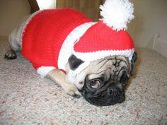 pug_santa_suit