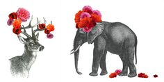 {No more blank walls} Animal collages by John Murphy