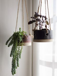 hanging plant pots - an easy way to bring nature into a small appartment