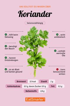 Koriander Did you know that about coriander? Healthy Diet Plans, Health And Nutrition, Healthy Recipes, Holistic Nutrition, Complete Nutrition, Nutrition Tips, Proper Nutrition, Eating Healthy, Clean Eating