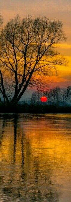 Sun set wall papers