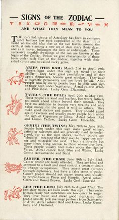 Brillo and the Meaning of Life - Print Magazine Zodiac Signs Chart, Zodiac Signs Horoscope, Zodiac Star Signs, Astrology Zodiac, Astrology Planets, Astrology Numerology, Astrology Chart, Astrology Report, Fortune Telling Cards