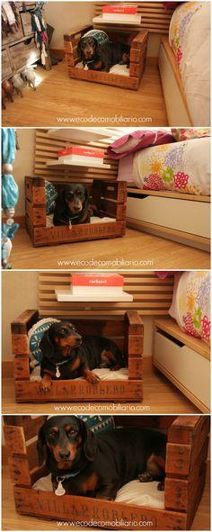 Cama de perro con caja de fruta antigua reciclada. Disponible en www.ecodecomobiliario.com