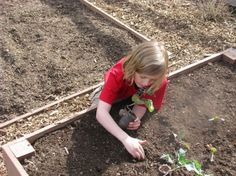 How to Get Your Children Excited About Gardening