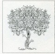 Secret Garden - Mama Mia - Picasa-Webalben