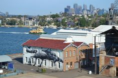 Building art by Roa in Western Australia.