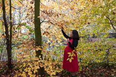marjoleine-fotogr..., fine art maternity photography, zwangerschapsfotografie, zwanger, zwangerschap, pregnancy, forrest, trees, autumn, herfst