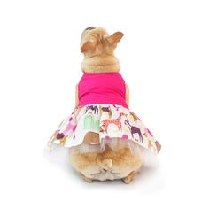 English  Bulldog  Pretty in the Park Dress by ForRosie on Etsy https://www.etsy.com/listing/291806369/english-bulldog-pretty-in-the-park-dress