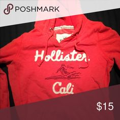 Hollister hoodie Worn a few times, great condition. Color is a orangish redish Hollister Sweaters V-Necks