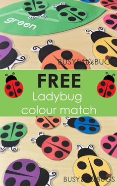 Free Ladybug colour matching game by Busy Little Bugs!
