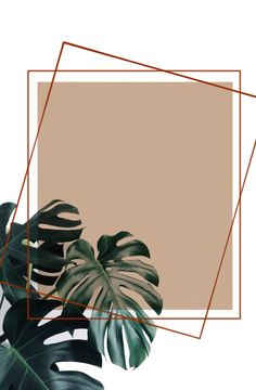I drew this myself. A sample of my layout. Gold Wallpaper Background, Wallpaper Nature Flowers, Horse Wallpaper, Black Phone Wallpaper, Plant Wallpaper, Flower Backgrounds, Flower Wallpaper, Watercolor Background, Cartoon Wallpaper