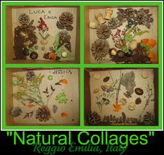 Reggio Inspired Nature Collages (from Rainbows Within Reach)
