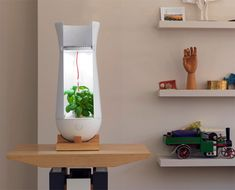 Hydroponics is a method of growing plants using mineral nutrient solutions, without soil; and the Eve Lamp here allows you to do just that. Plants In Jars, Container Plants, Backyard Aquaponics, Hydroponic Plants, Plant Lighting, Ikea Shelves, Yanko Design, Indoor Planters, Plant Holders