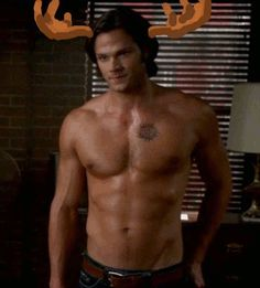The other one is a very attractive moose. - Supernatural As Told By Someone Who's Never Seen It - Click through!