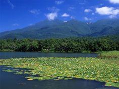 知床五湖(北海道斜里町)