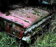 mossy car.