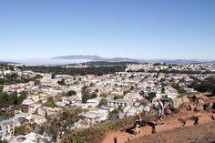 A Secret Hike & Picnic With A View, San Francisco