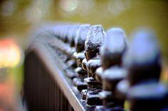 Fence (Reprise)
