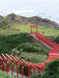 Tunnel of hundreds of torii gates at Motonosumi Inari Shrine (Yamaguchi, Japan) ------------- #japan #japanese