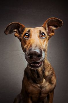 © Photograph by Elke Vogelsang from 'Goofy Goobers' Series