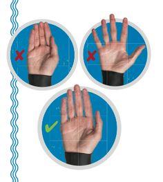 swim-hands.png 313×350 pixels