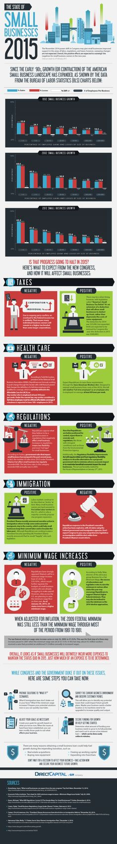 The State of Small Businesses 2015 (Infographic)