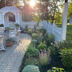 Big Potted Plants, Hardy Geranium, Patio Gazebo, Backyard, Types Of Plants, Gardening For Beginners, Garden Inspiration, Beautiful Gardens, Garden Landscaping