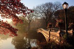 Central Park, New York. Beaut!