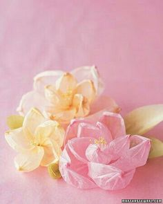Flowers crafted from colorful tissue or crepe paper are graceful, inexpensive to make, and always in season. Attach to a ribbon or elastic band to create a beautiful corsage. Make This Crepe Paper Flower Corsage Diy Wedding Flowers, Wedding Fabric, Diy Flowers, Fabric Flowers, Faux Flowers, Pretty Flowers, Book Flowers, Summer Flowers, Wedding Decor