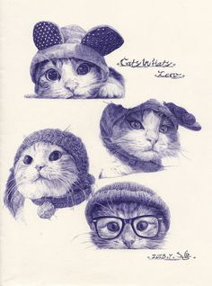 illustratosphere:  戴帽子的猫(cats in hats)by小丁点