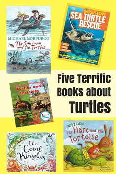 Children's Books: Five Terrific Books about Turtles