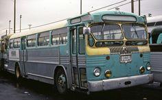 Pierce Transit 246 Tacoma Twin Coach