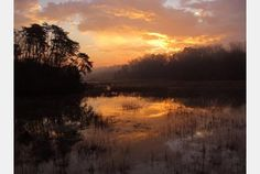 Sunrise at Halfway Creek on the Colonial Parkway (before the rains came)