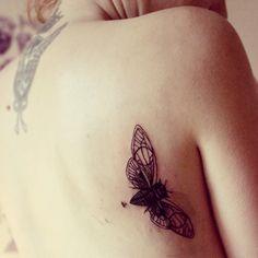 Bug wildlife-animal-tattoo-native-american-cheyenne-38
