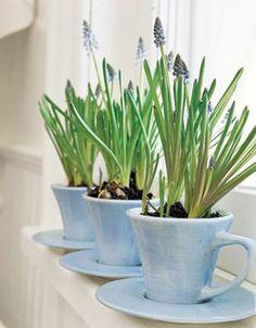 Cottage Flavor: Creative Ways to Use Teacups