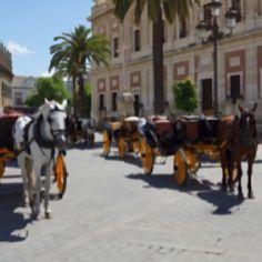Alrededores de la Catedral-Sevilla (Spain)