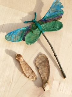 Dragonfly..... maybe try a butterfly too. Cute and creative project made out of all those annoying Maple tree seeds and a few twigs in your yard.