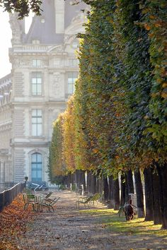 Paris in Autumn.
