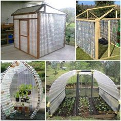 How to make your own plastic Bottles Green House? Check here--> http://wonderfuldiy.com/wonderful-diy-plastic-bottles-green-house/
