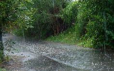 Cap 10: Deimos y Casandra estaba en un campo lluvioso en el sueno de Deimos. Casadra conoce a Deimos, pero el no conoce a Casandra.