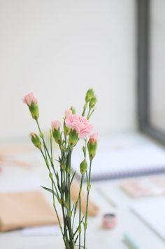 BLOG – NEAT Glass Vase, Concept, Flowers, Plants, Blog, Design, Home Decor, Homemade Home Decor, Floral