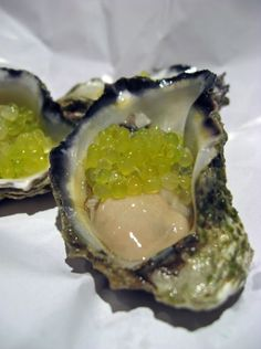 Oysters with Finger Lime Caviar  www.oesterkoning.nl  De Oesterkoning komt graag op uw feest oesters € 2,10. guido@oesterkoning.nl  0031( 0) 644538529