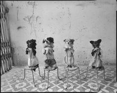 Mary Ellen Mark :: Performing Dogs, National Circus of Vietnam, Lenin Park, Hanoi, Vietnam, 1994