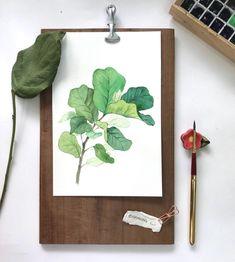 쌈 싸 먹고 싶은 떡갈잎 고무나무 그림 그리기 : 네이버 블로그 Botanical Art, Illustration, Drawings, Painting Inspiration, Painting, Watercolor And Ink, Oil Painting Inspiration, Sketch Inspiration, Art