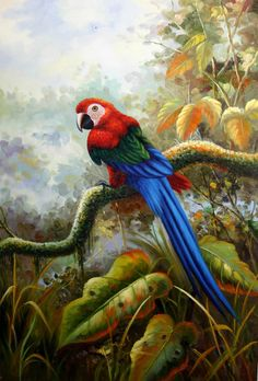 Art lessons in video format to create it easy for kids to learn art and Tropical Art, Tropical Birds, Tropical Paradise, Pinterest Pinturas, Parrot Painting, Paintings Famous, Bird Paintings, Most Beautiful Birds, Hawaiian Art