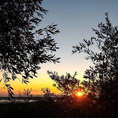 """""""Questo è un altro aspetto rasserenante della natura: la sua immensa bellezza è lì per tutti. Nessuno può pensare di portarsi a casa un'alba o un tramonto."""" Tiziano Terzani"""
